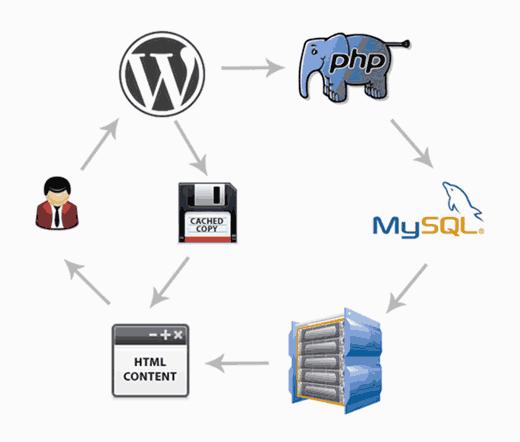 简单的步骤加快WordPress网站速度(无代码)