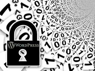 保持wordpress主题安全性有效措施汇总