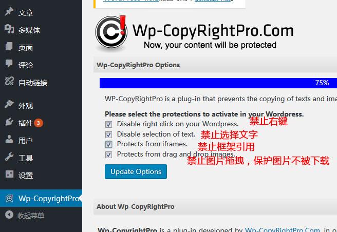 WordPress 博客防复制插件WP-CopyRightPro